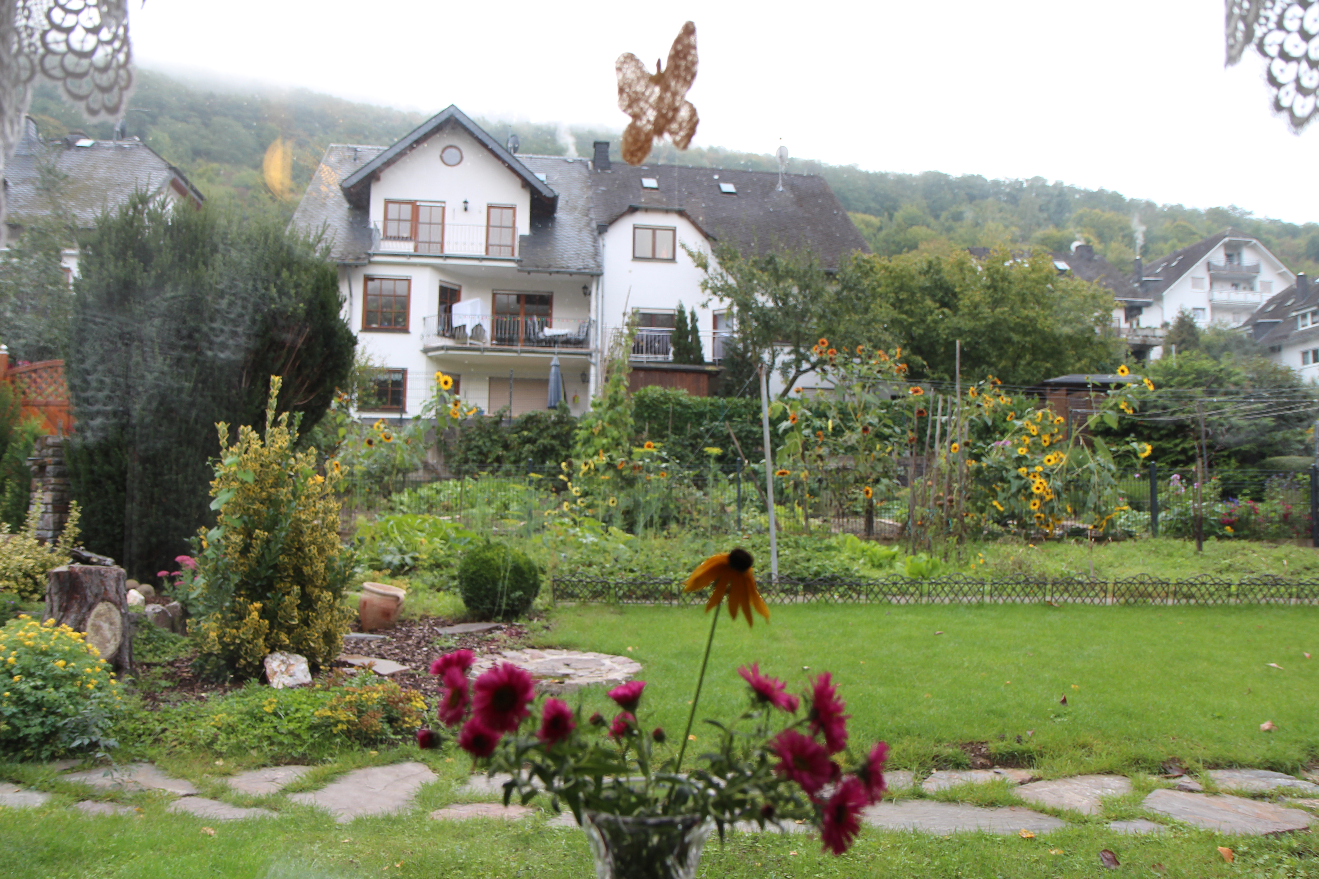 oberfell nestled beside the mosel river wake up and smell the joy